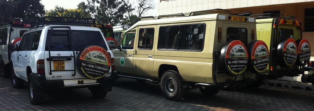 safari-cars